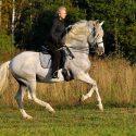 Recreational Rider Program