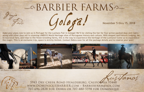 Barbier-GOLEGA-Ad_Issue2_web