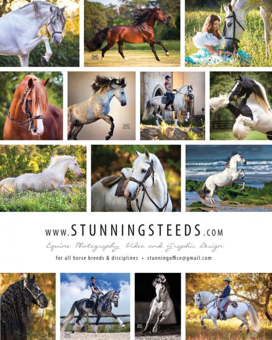 StuningSteedsAd_Issue2_web