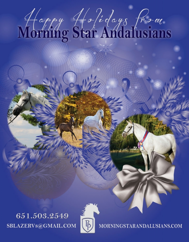 Morning Star Andalusians