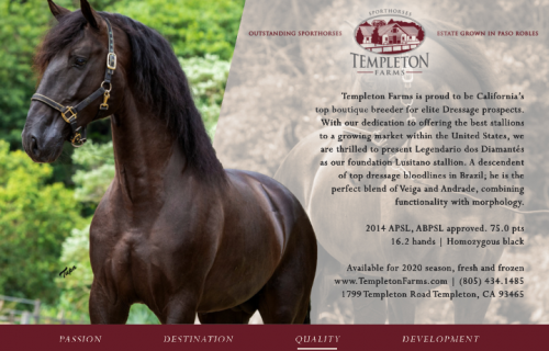 Templeton Farms Sporthorses