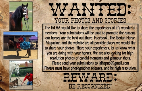 Andalusian and Lusitano Photos Wanted