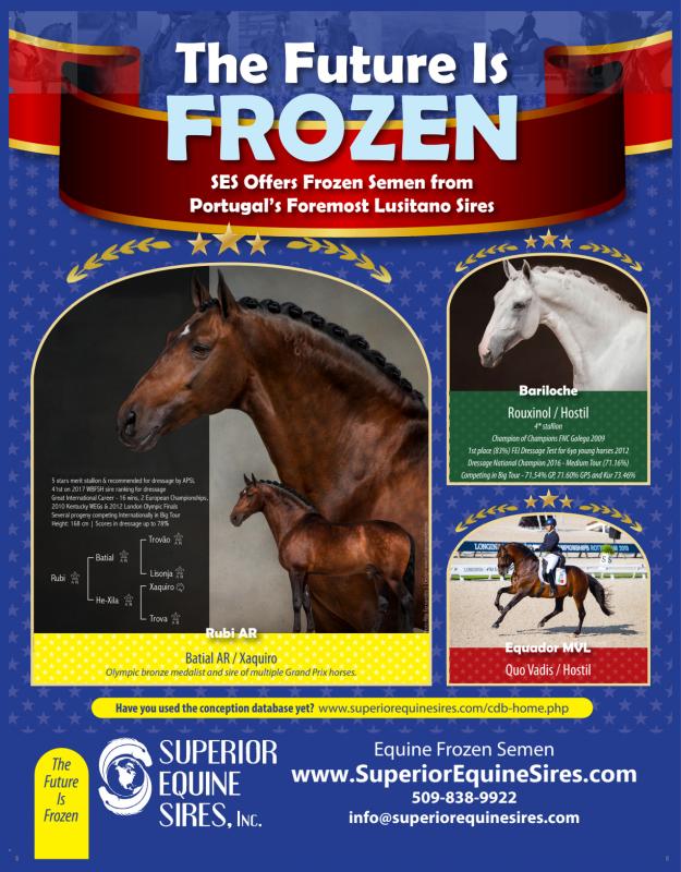 Equine Frozen Semen